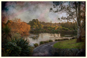 Botanic Gardens, Manurewa by Allysa Carberry, Set Image of the Night, Feb 2015